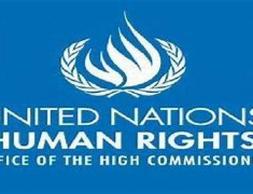L'exécution de Navid Afkari envoie un message très inquiétant aux manifestants, selon les experts de l'ONU