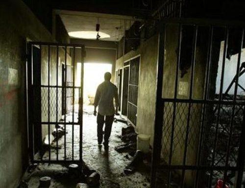 Le témoin des tortures subies par Navid Afkari a disparu