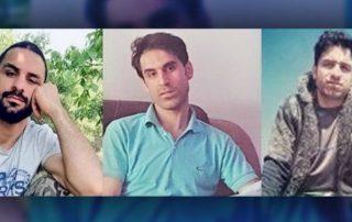 frères afkari